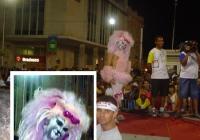 festivalfantasias109